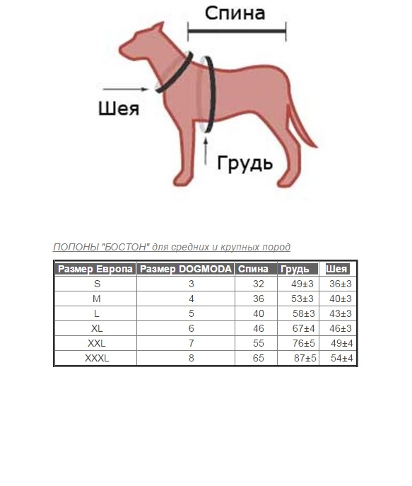 tablica razmerov.jpg